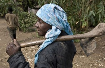 Tech access could save women farmers' time in farms