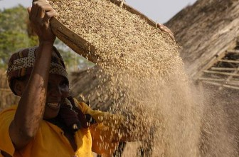 African agriculture is powering economic transformation