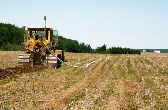 SA's agricultural sector slowly bouncing back to full strength