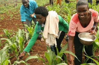 Why reliable climate and weather data is key to Africa's agricultural transformation