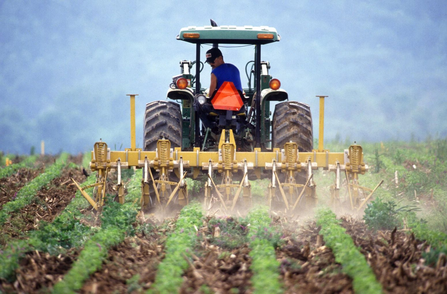 South Africa's 2018 Agricultural Outlook – challenges and opportunities that lie ahead