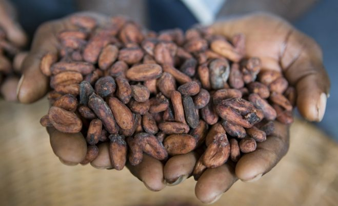 Ghana's Cargill Inc set to expand to producer countries