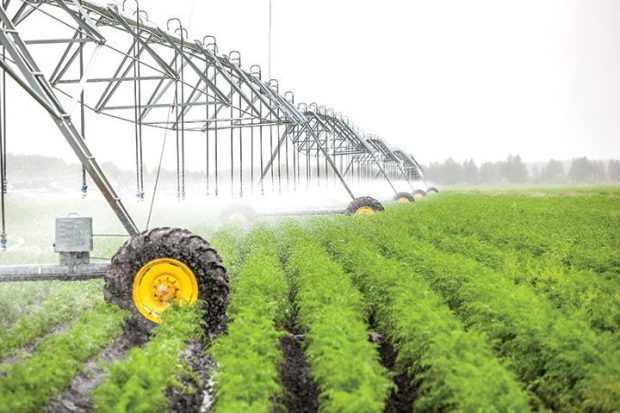 Use of variable speeds to reduce irrigation energy costs