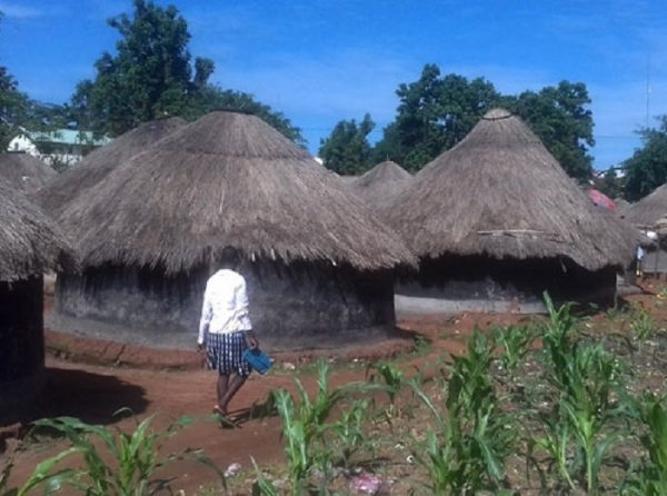 The question of land grabbing for commercial agriculture in Uganda