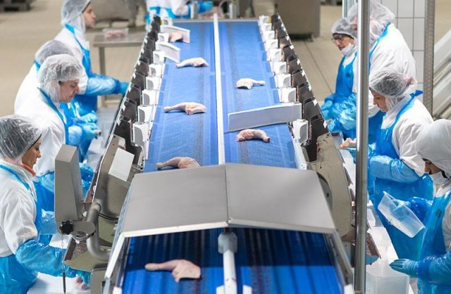 AVI Africa : Taking the lead in innovative poultry processing