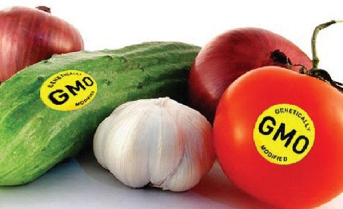 Ugandan government passes GMO Bill