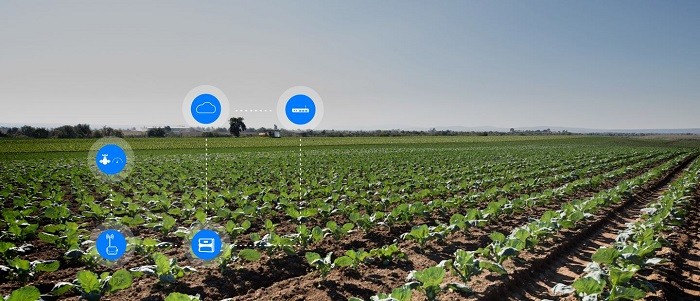 The role of digital technology in Africa's agricultural sector
