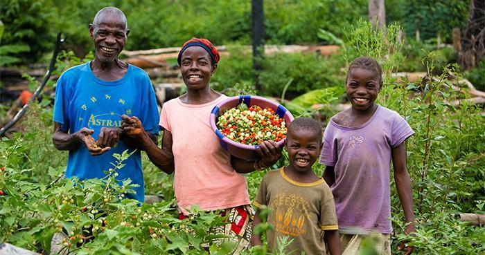 17,500 Liberian smallholder farmers receive US $25m from World Bank