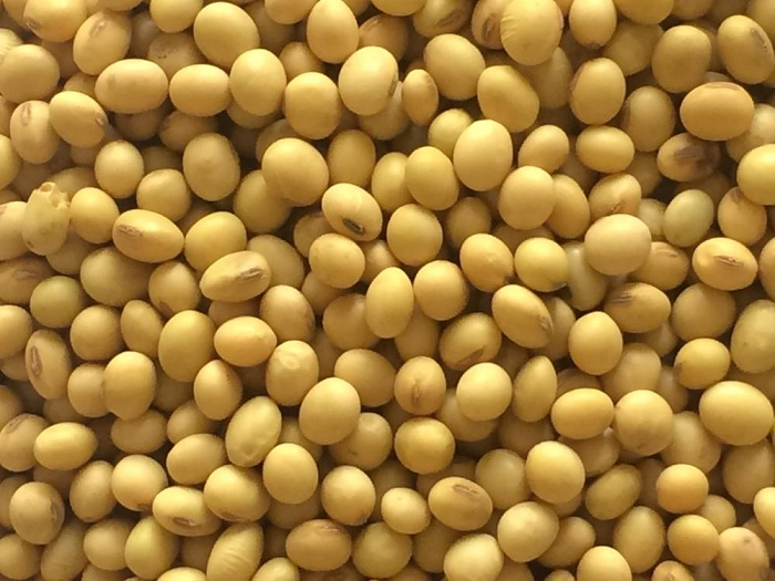 Electronic trading system of soya bean and chickpea to enhance foreign trade transaction in Ethiopia