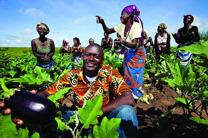 Angola to hold US $24.9m farming census