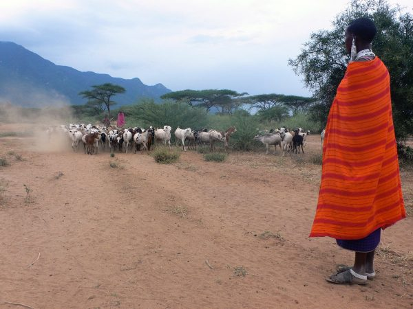Tanzania and IFAD strengthen partnership for reducing rural poverty