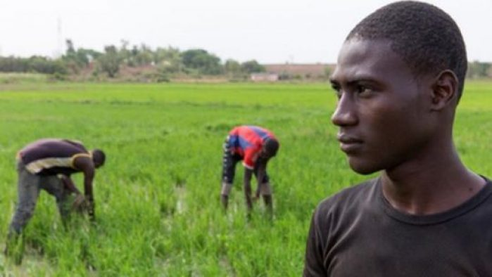 Mali and IFAD strengthen partnership for investing in rural youth
