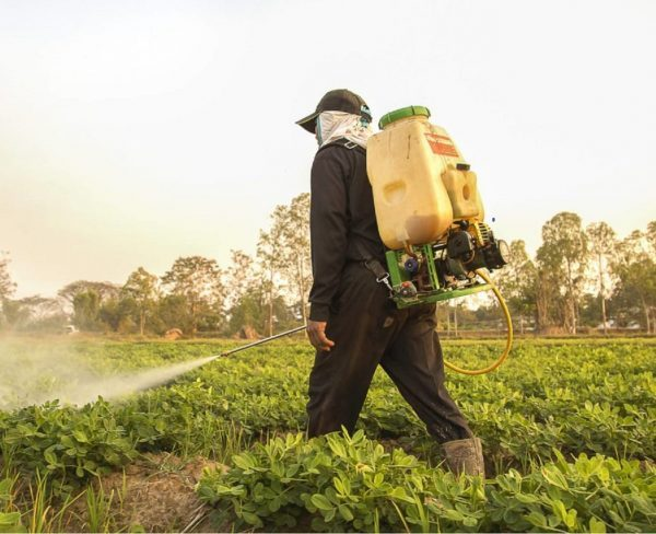 South Africa Agricultural Disinfectants Market to Show Strong Growth by 2025