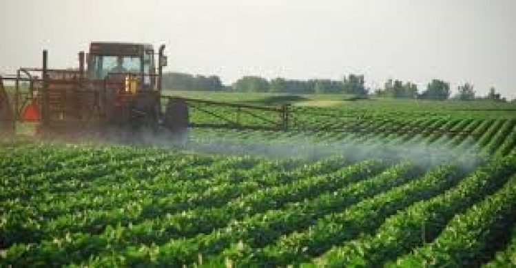 Pipes For Agricultural And Municipal Sectors Market growth rate (CAGR) of 5.5% for the period of 2018 to 2023