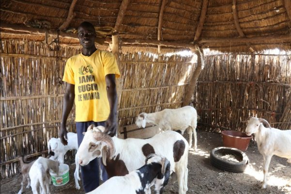 IFAD and Senegal invest in decent jobs and incomes for poor and marginalized rural young people