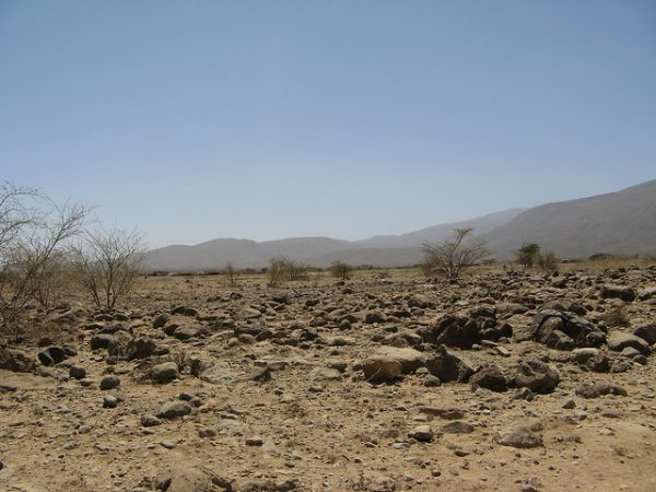 Ethiopia and IFAD to help families adapt to climate shocks in new multi-million dollar project