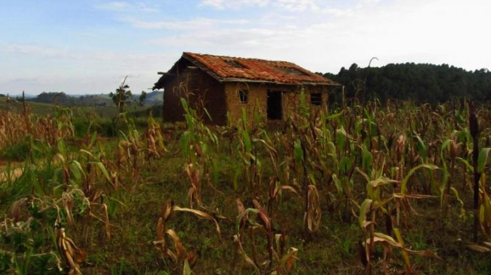 Ethiopia and IFAD to increase access to financial services in rural areas threatened by climate change