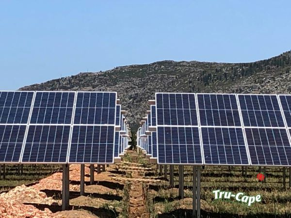 Ceres South Africa farms lead the move towards renewable energy