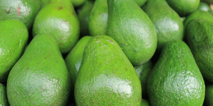 AFA suspends avocado exports from Kenya indefinitely