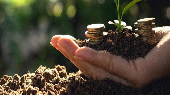 Kenya Climate Innovation Centre to receive US $14m in funding for the AgriBiz program
