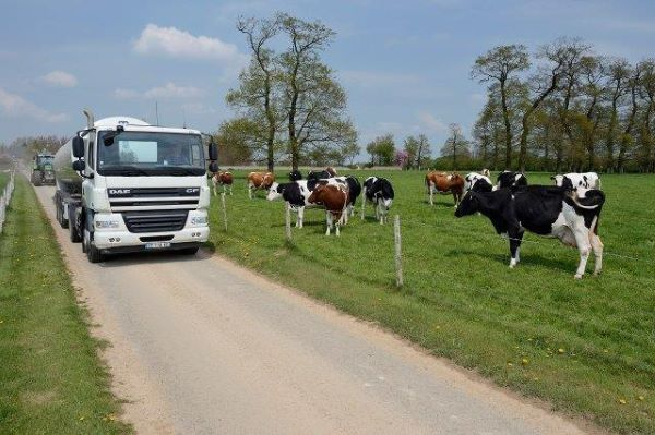 National milk buyer in South Africa renews contract with MiX Telematics
