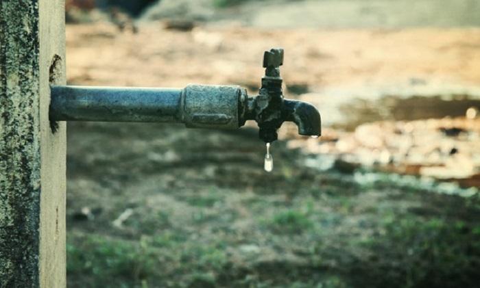 Farmers' dread of water shortage in Egypt.