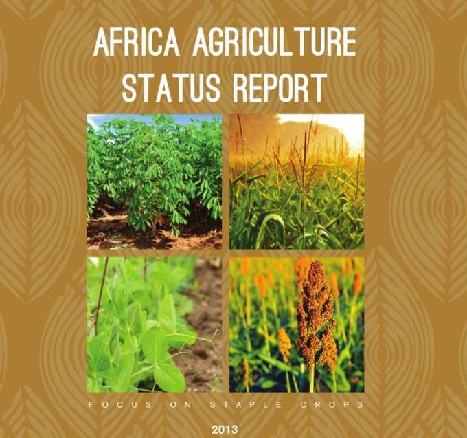 The 2020 African Agriculture Status Report debut