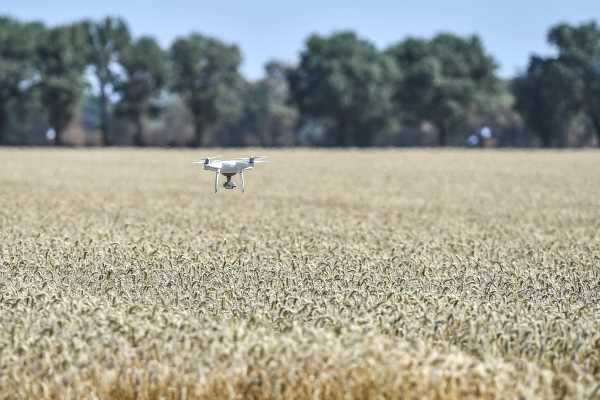 Drones in agriculture: functions and regulations