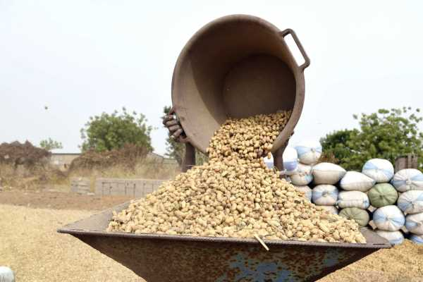 International Islamic Trade Finance Corporation (ITFC) to enhance Groundnut Oil Quality Standards and boost Senegalese Export Capabilities