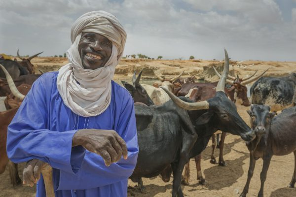 IFAD joins with partners to build resilience and boost development in the Sahel