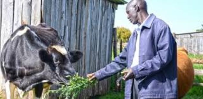 AfDB grants Burundi's PADCAE-B US $20.55m to enhance climate resilience of farmers