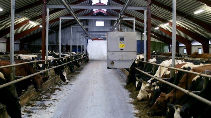 Sustainable milk production goes hand in hand with animal welfare and high quality