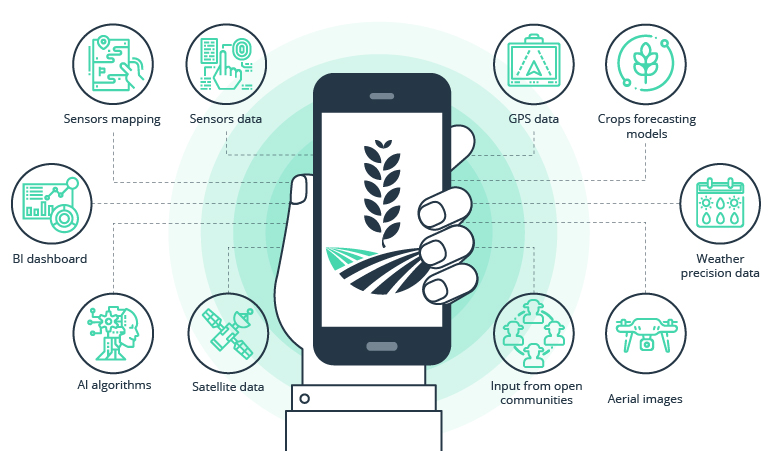Technology and simplified data on the weather and management of production processes for agribusiness sustainability in Kenya