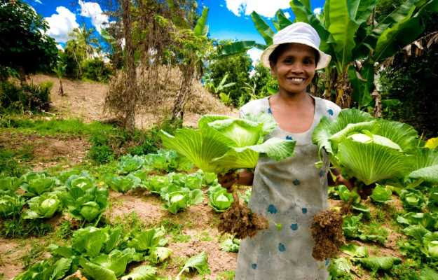 African Development Bank, IFAD and partners redouble efforts to stop hunger in Africa and strengthen food security