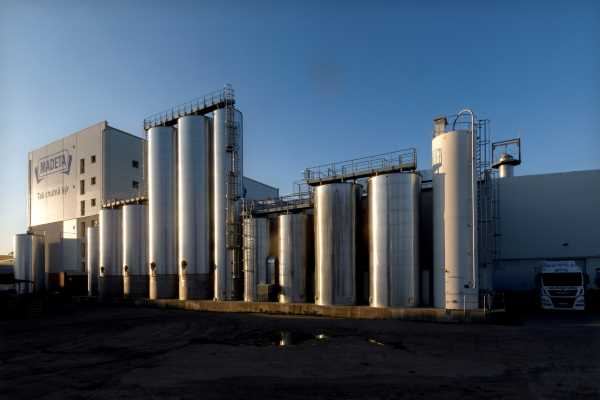 GEA builds new cheese plant for Mayetta in Czech Republic