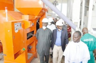 10 Nigerian states to get US $30m in rice milling machines