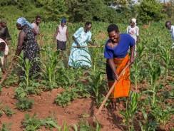 Women Deserve More Recognition in Farming