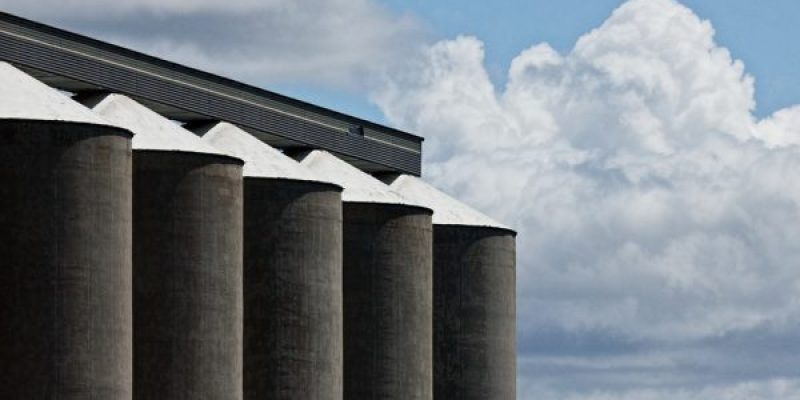 The Importance Of Proper Grain Storage For Food Security
